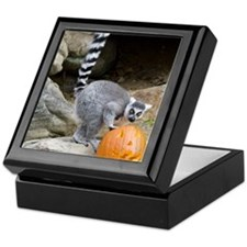 Lemur Pumpkin Keepsake Box