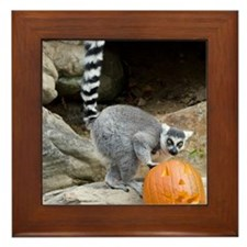 Lemur Pumpkin Framed Tile