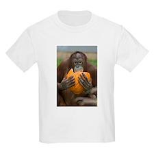 Orangutan with Pumpkin Kids Light T-Shirt