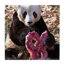 Panda With Treat Tile Coaster