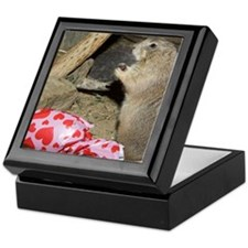 Chipmunk Next to Present Keepsake Box