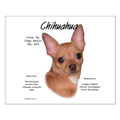 Smooth Chihuahua Small Poster