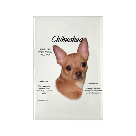 Smooth Chihuahua Rectangle Magnet