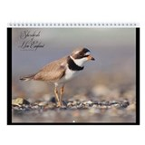 The Shorebirds of New England Wall Calendar