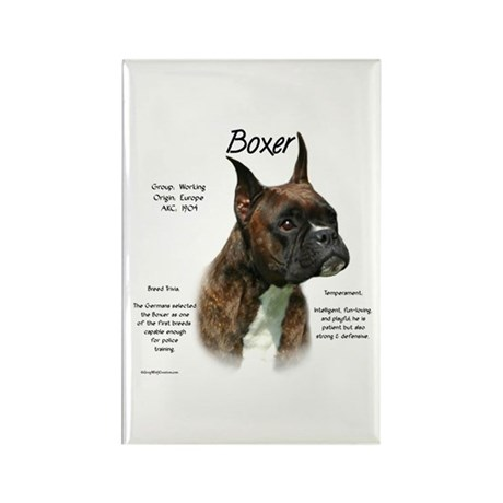 Brindle Boxer Rectangle Magnet
