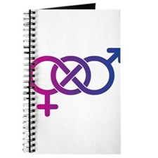 Bi Pride Multicolor Logo Journal
