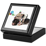 micro pigs sleeping Keepsake Box