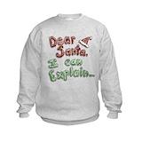 Sweaters Crew Neck