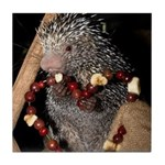 Porcupine With Berry Heart Tile Coaster