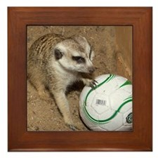Meerkat on Soccer Ball Framed Tile