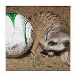 Meerkat With Soccer Ball Tile Coaster