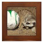 Meerkat With Soccer Ball Framed Tile
