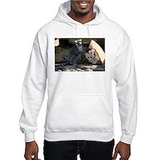 Lemur With Easter Bag Hooded Sweatshirt