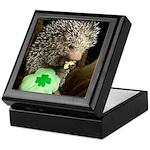 Porcupine with Shamrock Keepsake Box
