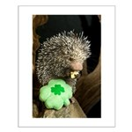 Porcupine with Shamrock Small Poster