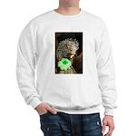 Porcupine with Shamrock Sweatshirt