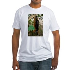 Red Ruffed Lemur with Shamrock Fitted T-Shirt