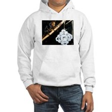 Golden Headed Lion Tamarin With Snowflake Hooded S