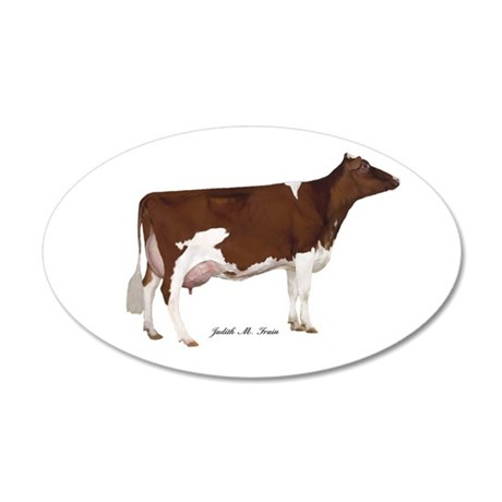 Red and White Holstein Cow 20x12 Oval Wall Decal