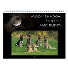 2013 Moon Shadow Shilohs Wall Calendar