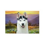 Husky Meadow Rectangle Magnet (100 pack)