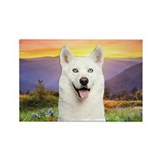 White Husky Meadow Rectangle Magnet (10 pack)