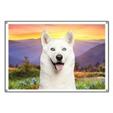 White Husky Meadow Banner
