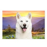 White Husky Meadow Postcards (Package of 8)
