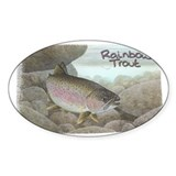 Rainbow Trout, Fish Rectangle Decal