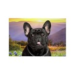 French Bulldog Meadow Rectangle Magnet