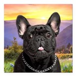 French Bulldog Meadow Square Car Magnet 3