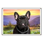French Bulldog Meadow Banner