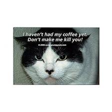 Grumpy Cats Rectangle Magnet