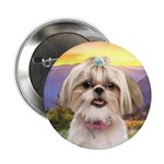 Shih Tzu Meadow 2.25