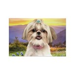 Shih Tzu Meadow Rectangle Magnet (100 pack)