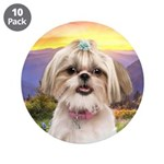 Shih Tzu Meadow 3.5