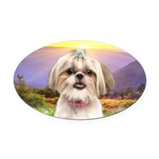Shih Tzu Meadow Oval Car Magnet