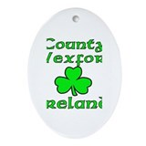 Cute St. patrick Oval Ornament