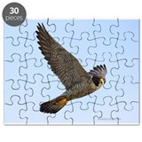EC on Banding Day Puzzle
