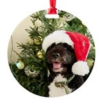 Bo the Dog Round Ornament