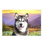 Malamute Meadow Postcards (Package of 8)