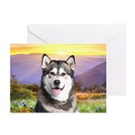 Malamute Meadow Greeting Cards (Pk of 10)