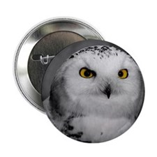 "Cute Comox 2.25"" Button (10 pack)"