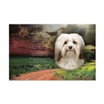 Why God Made Dogs - Havanese Mini Poster Print