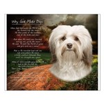 Why God Made Dogs - Havanese Small Poster