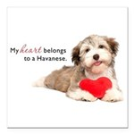 Havanese Heart Square Car Magnet 3