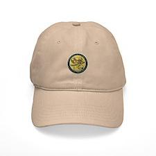 Gold CVN 65 Inactivation! Baseball Cap