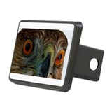 Raptor Eyes Rectangular Hitch Cover