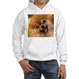 Happy Pomeranian Jumper Hoody