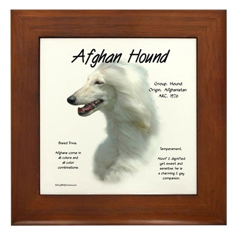Afghan (white) Framed Tile
